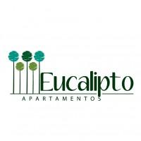 eucalipto-aptos
